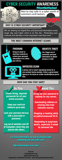 Cybersecurity Infographic (English)