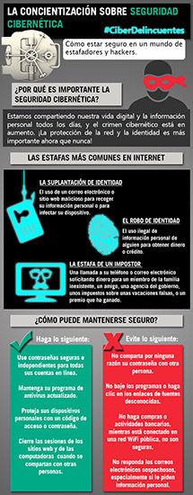Cybersecurity Infographic (Español)